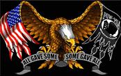 POW eagle